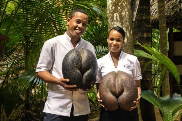 Excursion - La Digue & Praslin (5) Coco De Mer